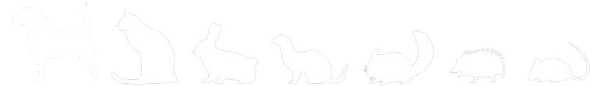 犬・猫・うさぎ・フェレット・ハリネズミ・ハムスター・デグー